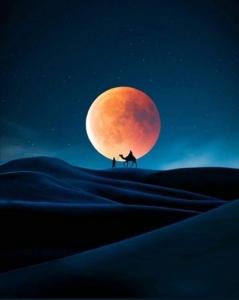 moon41.jpg