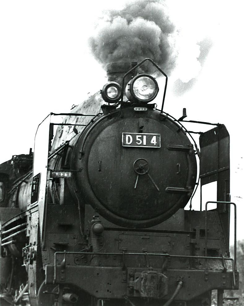 DSC_5521v.jpg