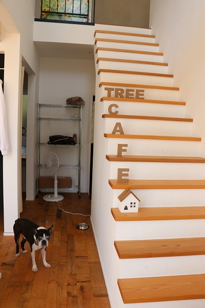 2021.10.17 tree cafe①-3
