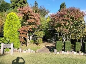 211006見本庭園2