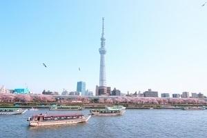 東京都の有名なもの2